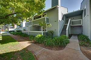 More Details about MLS # ML81843918 : 1335 PALM ST