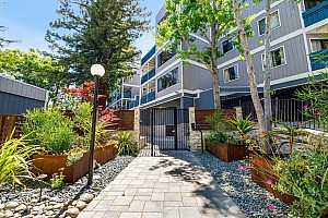 Browse active condo listings in MARIPOSA HEIGHTS
