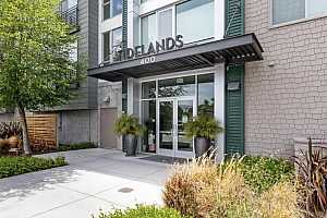 Browse active condo listings in TIDELANDS