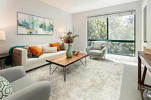 Browse active condo listings in PALO ALTO REDWOODS