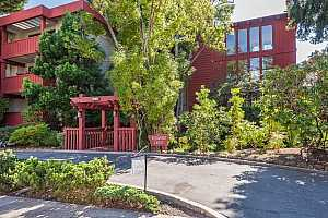 Browse active condo listings in REDWOOD CREST