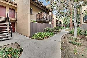 Browse active condo listings in MISSION GROVE